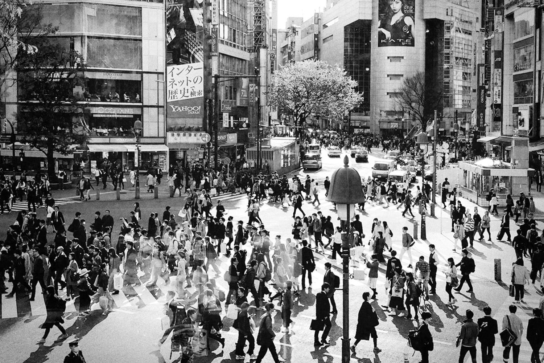 Shibuya Crossing – Tokyo